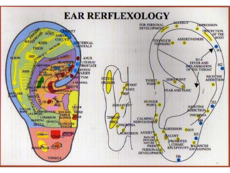ear reflexology neurofeedback bioresonance frequency therapy